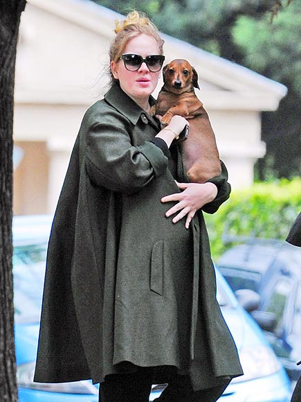 SOMEONE LIKE 'LOU'  photo | Adele