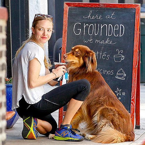 ON COMMON GROUND photo | Amanda Seyfried
