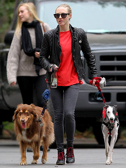 DOGGIE DUO photo | Amanda Seyfried