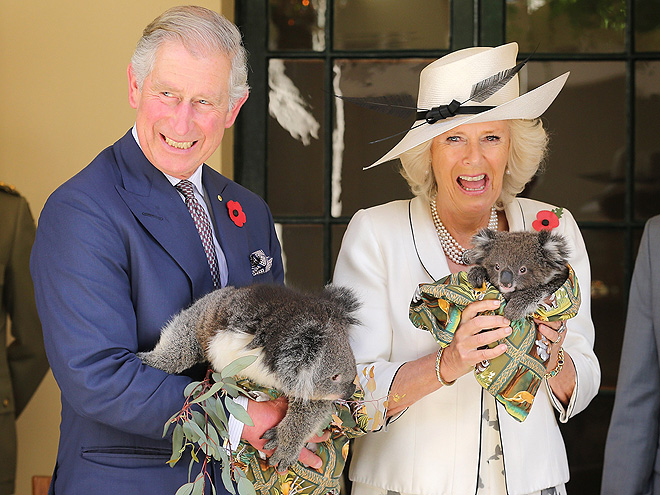 KOALA-TY TIME photo | Camilla Parker Bowles, Prince Charles