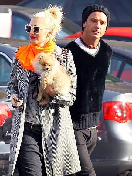 PUPPY LOVE photo | Gavin Rossdale, Gwen Stefani