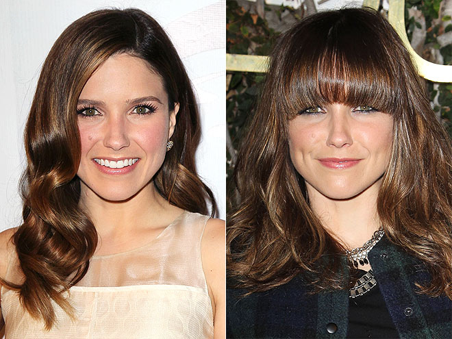 SOPHIA BUSH photo | Sophia Bush