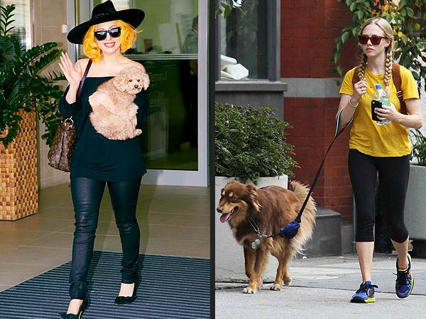 lady gaga 2 600x450 POLL: Which Star's Dog Walking Style Is Best?