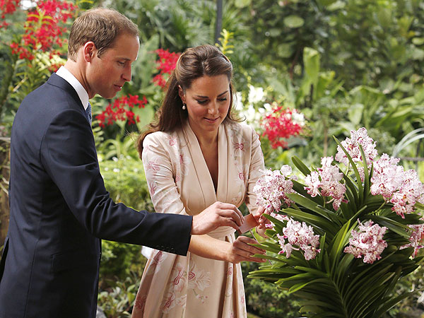 Prince William and Kate Arrive in Singapore| The British Royals, The Royals, Kate Middleton, Prince William, Princess Diana