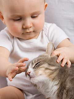 Helen Moon Tips: 6 Ways to Safely Introduce Your Baby to Your Pet