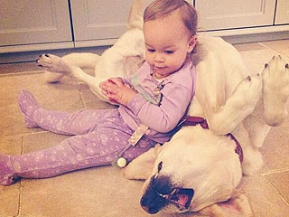 PHOTO: Jack Osbourne's Daughter, Pearl, Uses Her Dog as a Chair