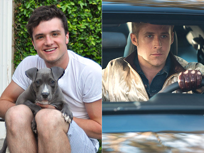 JOSH: IT&#39;S PUPPY LOVE photo | Josh Hutcherson, Ryan Gosling