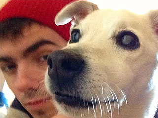The Wanted's Nathan Sykes Sends Sad Message About His Dog