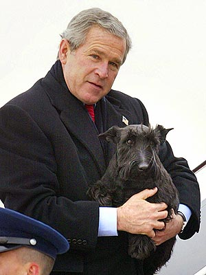 Barney Bush, First Dog, Dies, George W Bush Announces