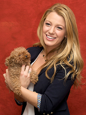 Blake Lively Takes Her Dog to the Vet in Ontario