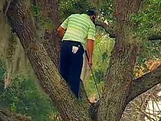 Must Watch: Golfer Sergio Garcia Hits His Ball Into (and Back Out of!) a Tree