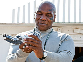Mike Tyson Says His Ex Cooked and Ate His Pigeon | Mike Tyson