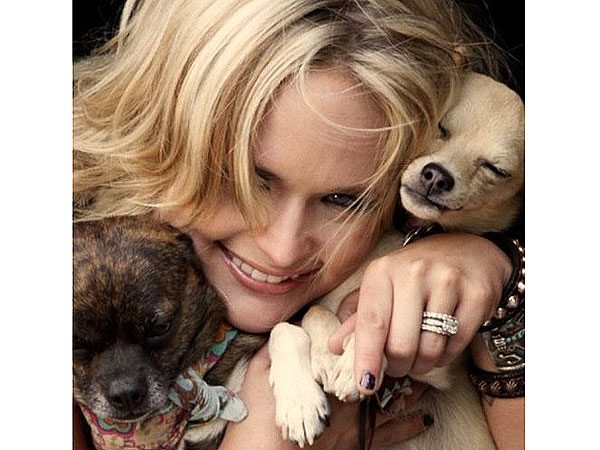 Miranda Lambert, Blake Shelton: Stars and Their Pooches