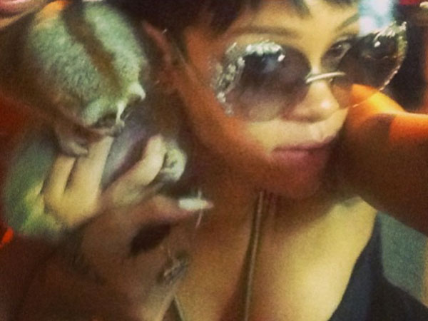 Rihanna Photo with Primate in Thailand Gets Two Men Arrested