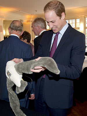 Prince William Speaks Out for Endangered Species