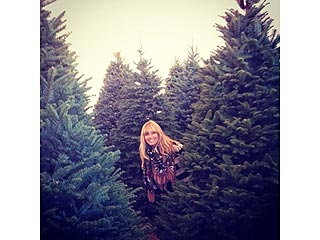Heidi Klum Wants 'Perfect' Christmas Tree, Picks Out Six!