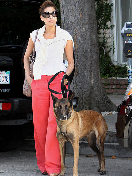 EVA: TESTED A SHOCK COLLAR photo | Eva Mendes