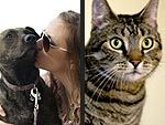 'Tails' of Courage & Survival: Real-Life Pet Heroes