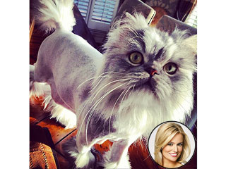 Emily Maynard Posts a Nearly Nude Photo &#8211; of Her Cat