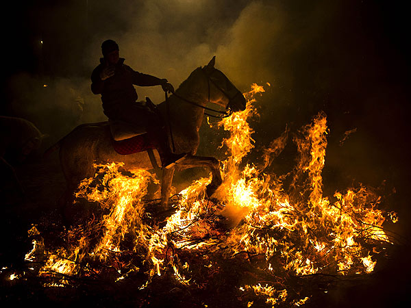 PHOTO: Horses Ride Through Fire for Spanish Festival| Horses, Wacky Animal Stories