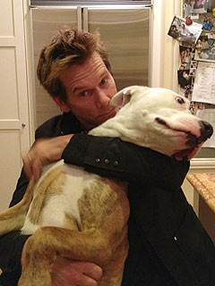 Kevin Bacon: DNA Test Revealed My Street Dogs&#39; Mysterious Pasts