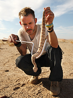 Dominic Monaghan Cuddles Up to Venomous Snakes on New Show