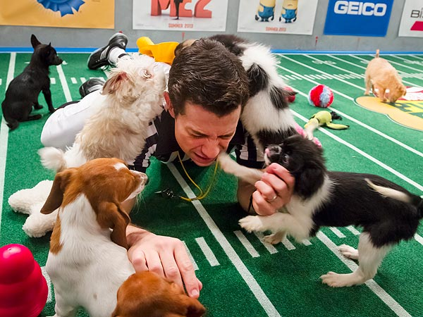puppy-bowl-2-600 - About dogs and people - Inspiration & Hope
