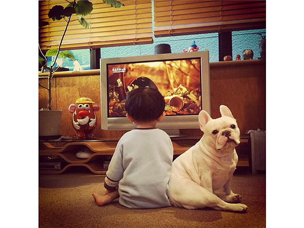 Instagram Photos of Tasuku and his French bulldog Muu Go Viral