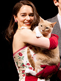 Breakfast at Tiffany&#39;s Cat Fight: Star Kitty Makes Demands, Understudy Let Go