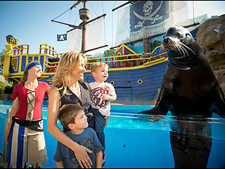 PHOTO: Sheryl Crow & Sons Meet Sea Lion | Sheryl Crow