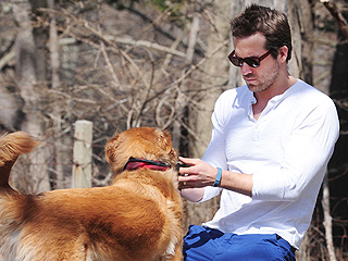 The Daily Treat: Why We&#39;re Jealous of Ryan Reynolds&#39;s Dog | Ryan Reynolds