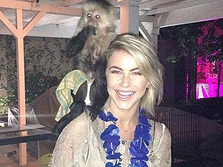 Meet Julianne Hough's New 'Soulmate' … A Monkey!