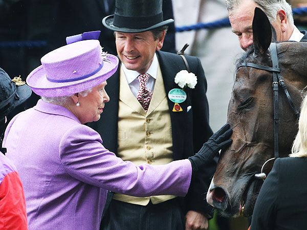 Queen Elizabeth's Horse Wins Gold Cup| Animals & Pets, The Royals, Queen Elizabeth II