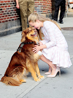 Amanda Seyfried, Dog Finn in New York: Photo