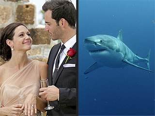 Shark Week vs. The Bachelorette Finale: Which Brought More Drama?