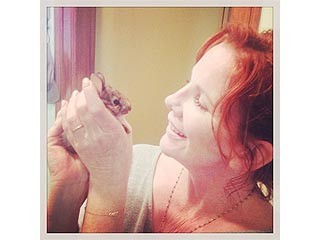 The Daily Treat: Aww – Look What Melissa Gilbert's Cat Dragged In | Melissa Gilbert