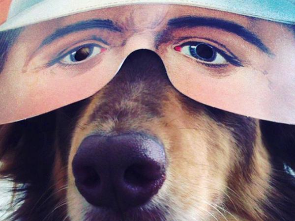 Amanda Seyfried Posts Video of Dog Finn