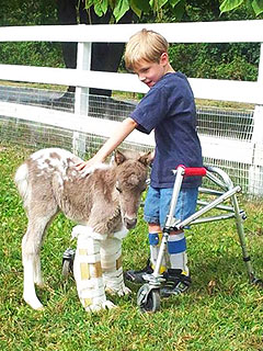 How Sweet! A Boy and a Miniature Horse Became BFFs Over Shared Disability