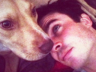 No Hard Feelings: Nina Dobrev Helps Ian's Dog Give Birth