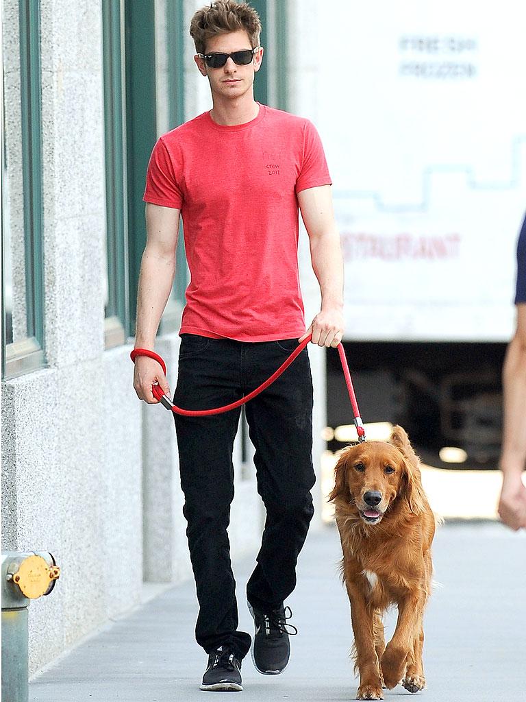 Фото Эндрю Гарфилд и его  Собака Ren