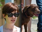 Stars and Their Pets: Anne's Coffee Mate | Adam Shulman, Anne Hathaway