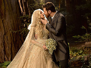 Sean Parker Says He and Wife 'Spat Upon' as Part of Intense Wedding Backlash
