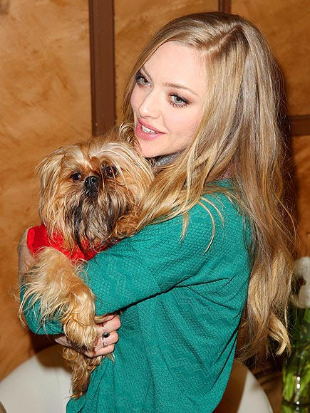 DOGGONE IT photo | Amanda Seyfried