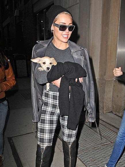 PUPPY PLUS-ONE photo | Miley Cyrus