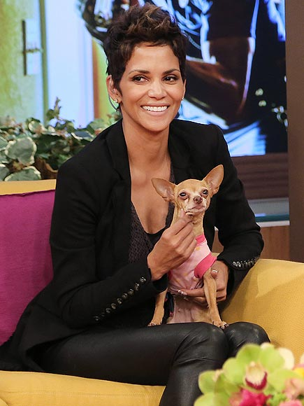 PET PROJECT photo | Halle Berry