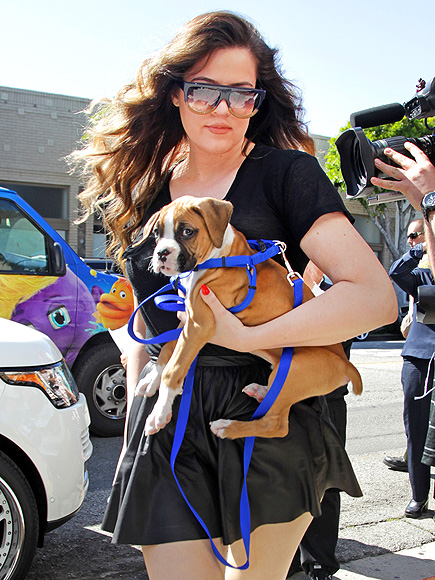 DOGGONE CUTE photo | Khloe Kardashian