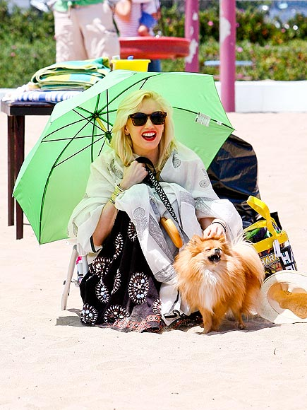 PUP PATROL photo | Gwen Stefani