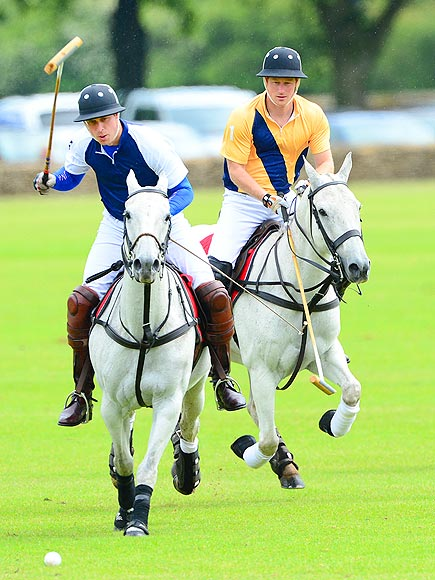 YEA OR NEIGH? photo | Prince Harry, Prince William