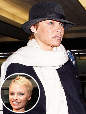 Pamela Anderson brunette