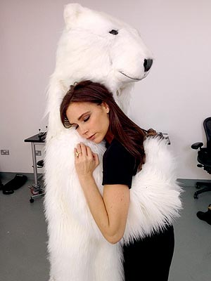 Victoria Beckham polar bear
